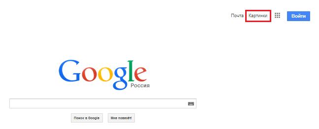 собаки фото гугл