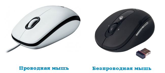 Мышь usb включается переподключением