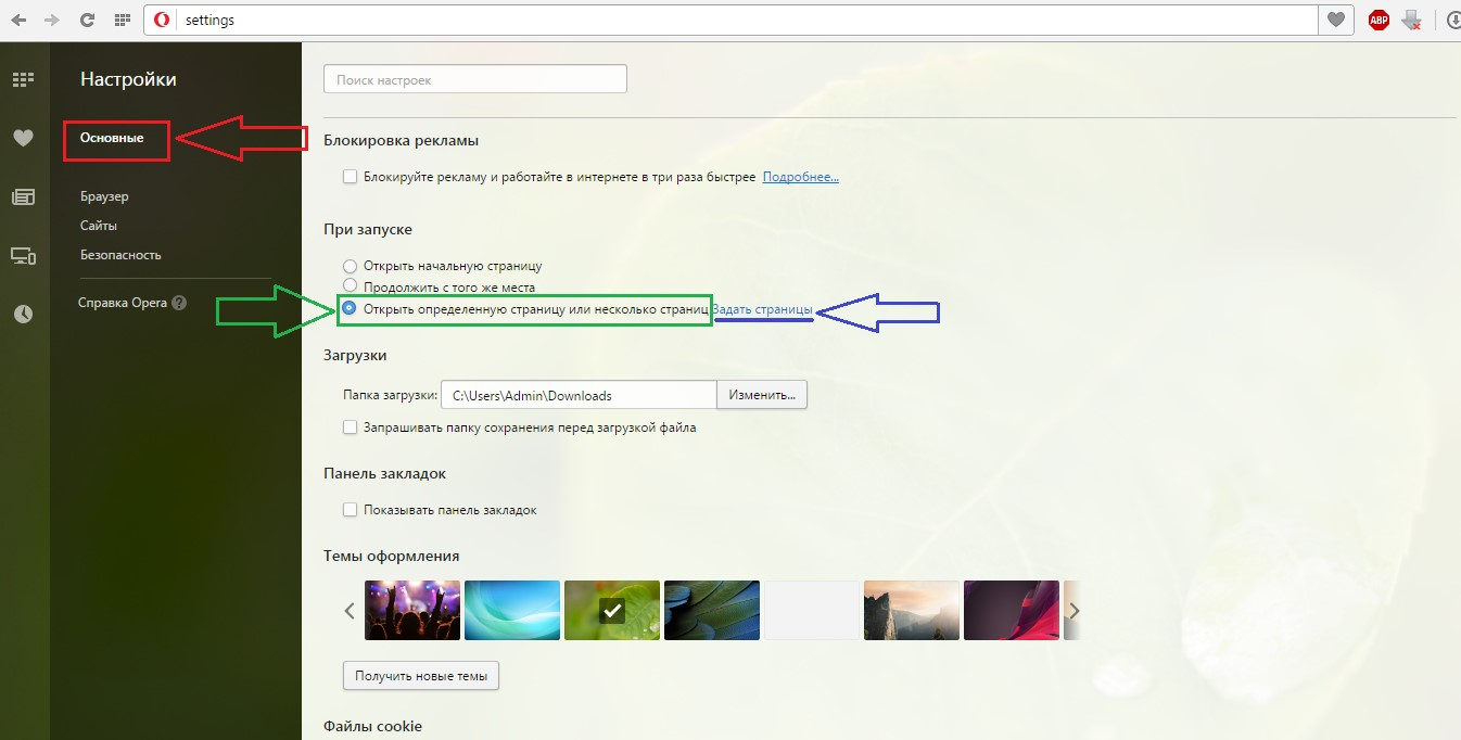 №2. Окно настроек браузера Опера