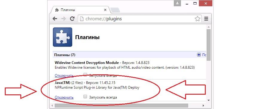 №3. Плагин Java в списке плагинов Google Chrome