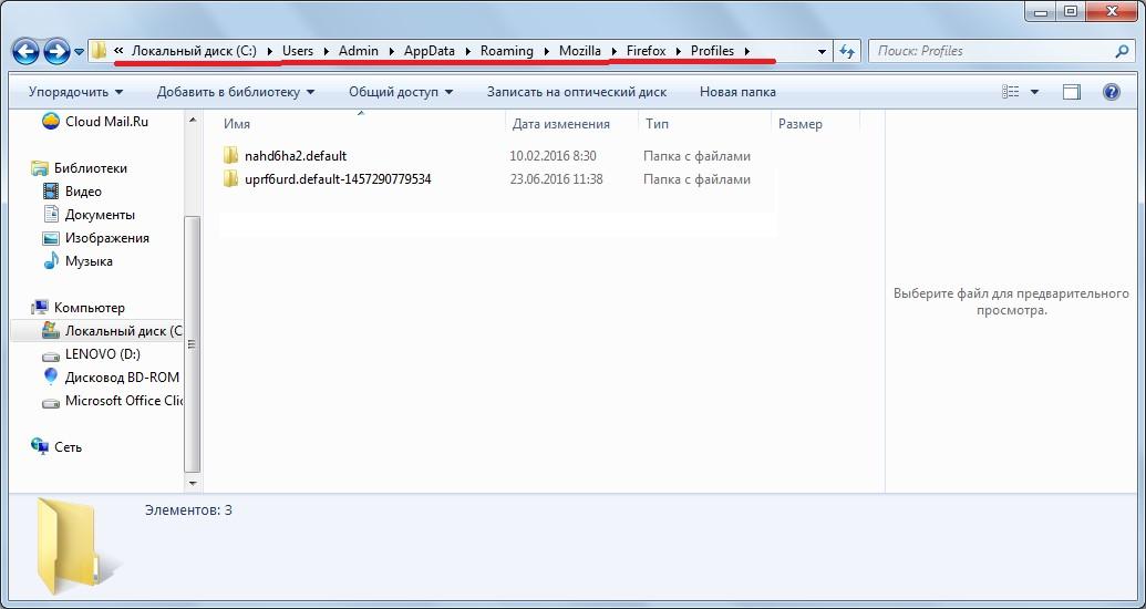 №4. Папка Profiles для Firefox