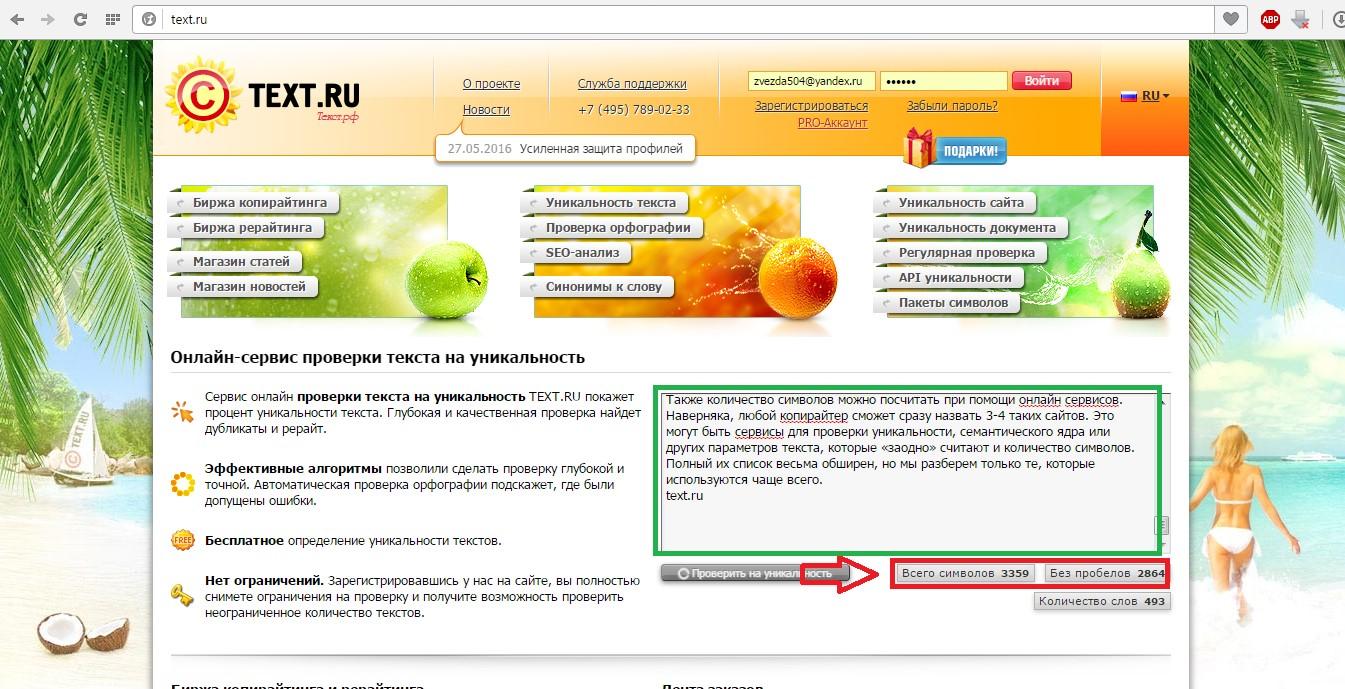 №5. Окно сайта text.ru