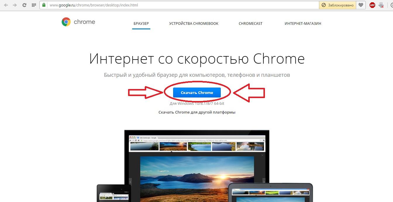№3. Страница скачивания Google Chrome