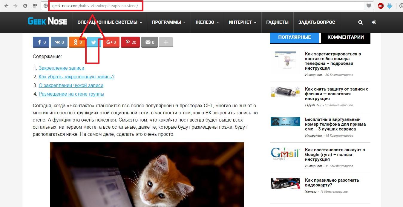 №2. Расположение URL адреса в браузере