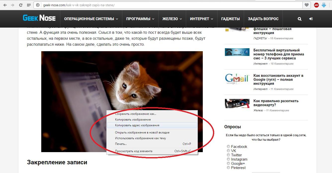 №4. Выпадающее меню при нажатии на изображение правой кнопкой мыши