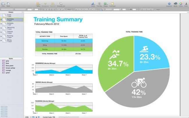 Рис. 3 – внешний вид окна программы Apple Numbers