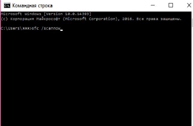 Рис. 9 – команда сканирования файлов ОС