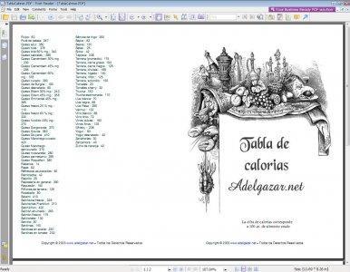 Рисунок 16. Портативная версия программы Foxit