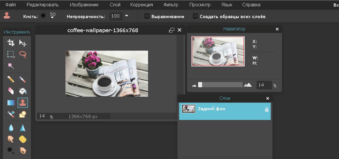 Рис. 2 – работа с изображением в сервисе Pixlr