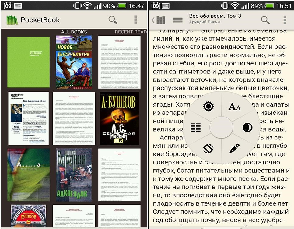 Рис.10. PocketBook Reader
