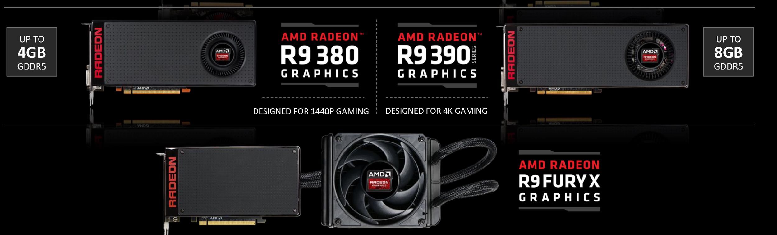 Рис. 1. Разнообразие видеокарт AMD Radeon