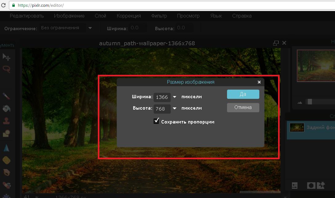 Рис. 10 – окно «Размер изображения» в Pixlr