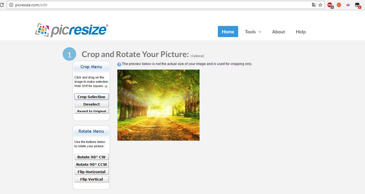 Рис. 17 – обрезка рисунка на сайте Pic Resize