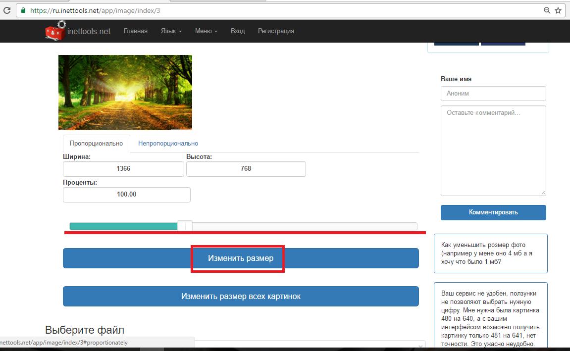 Рис. 7 – работа с сервисом Inet Tools