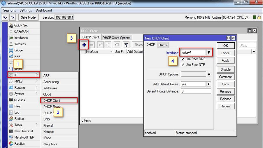 рис. 12. Автоматическое получение внешнего IP при помощи DHCP