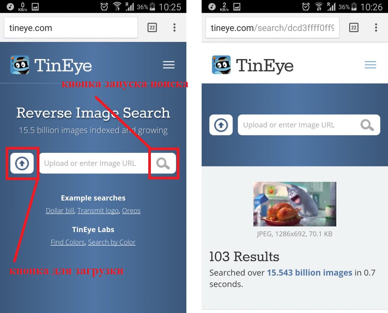 Использование сервиса TinEye