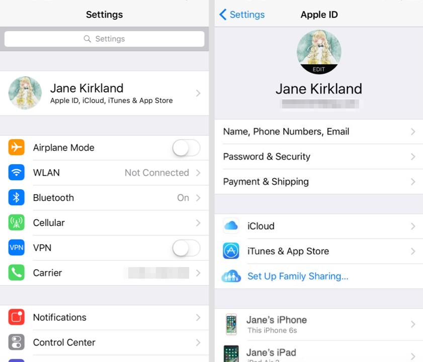 Рис.12 – просмотр и отвязка Apple ID