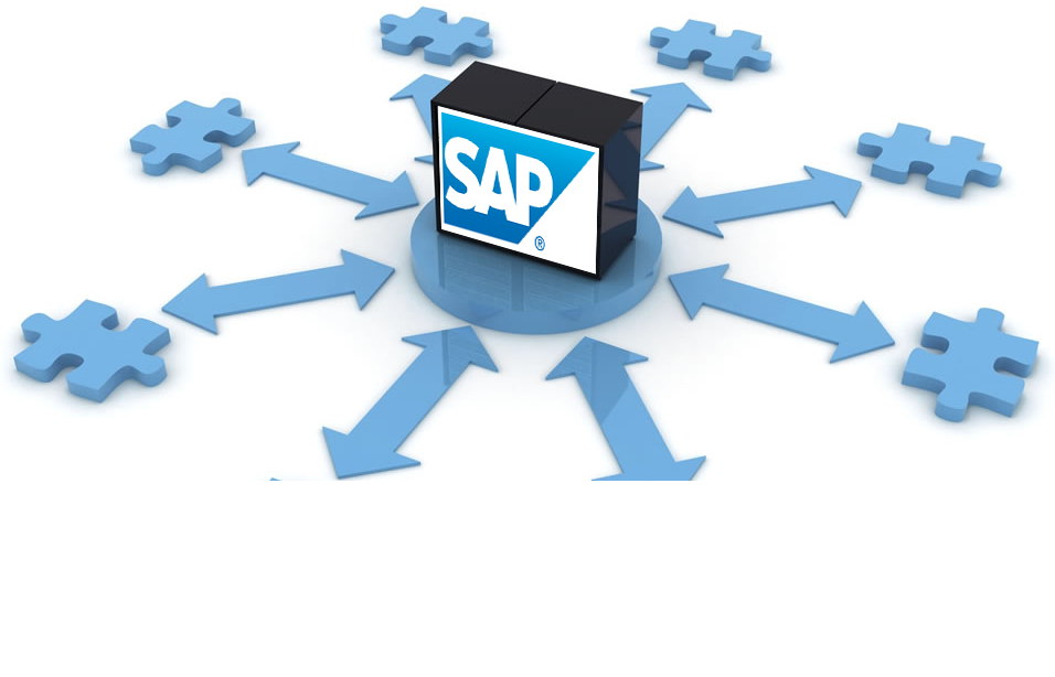 Рис. 4 – Многофункциональность системы SAP