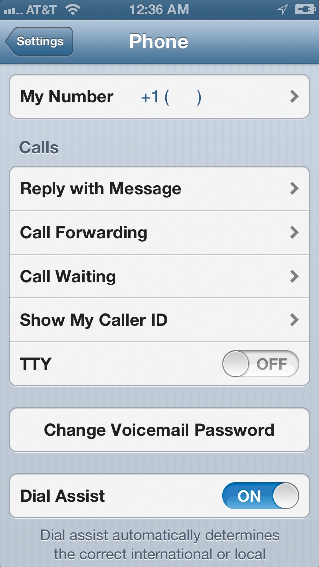 Рис.7 – Настройки TTY в iOS без русификации прошивки