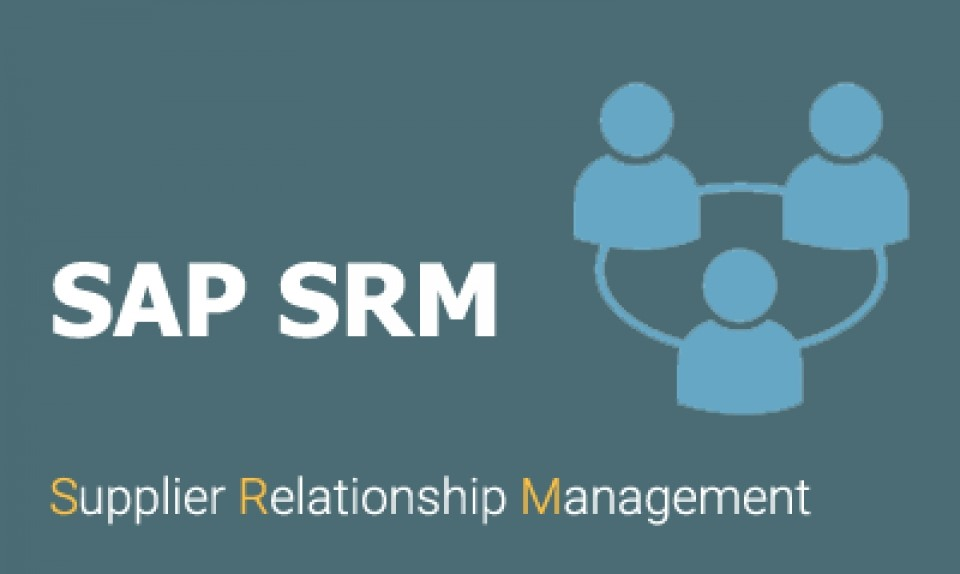 Рис. 7 – Программа SAP SRM