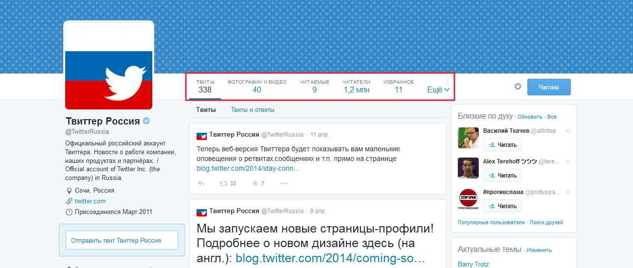 Рис. 2. Профиль российского филиала социальной сети.