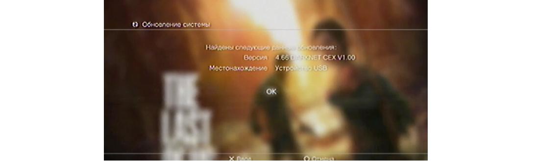 Рис. 7. Информация о файлах на флешке, отображаемая в PlayStation