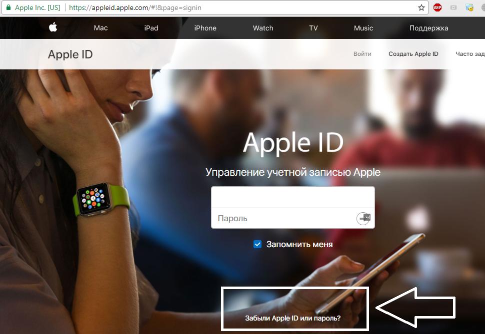 Рис.18 – страница входа на страницу пользователя Apple ID