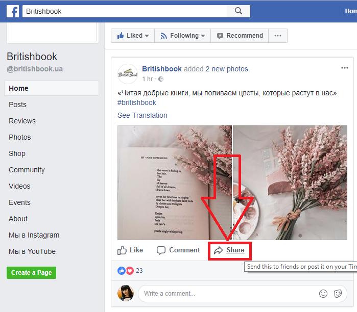 Рис.6 – кнопка «Поделиться записью» в Facebook