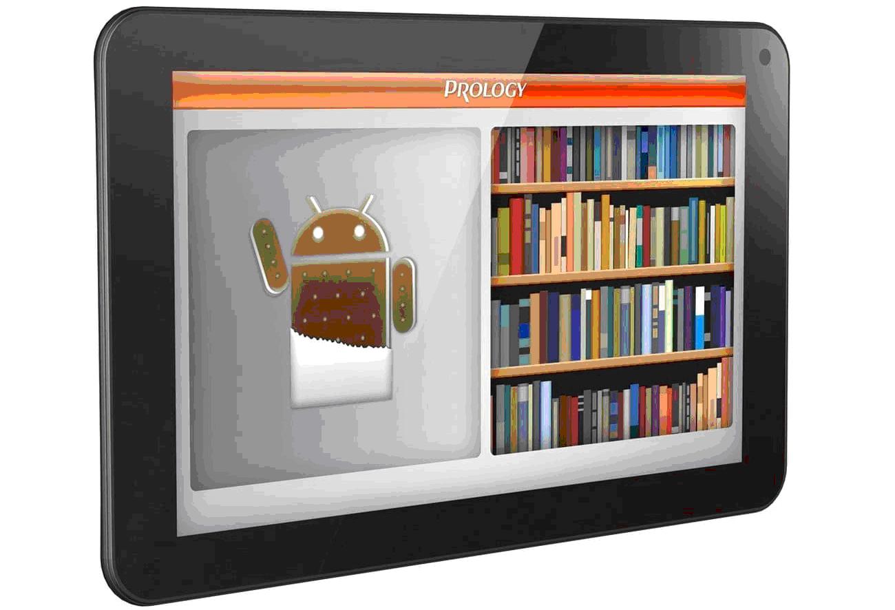 Рис. 2. Электронная книга с TFT-экраном.