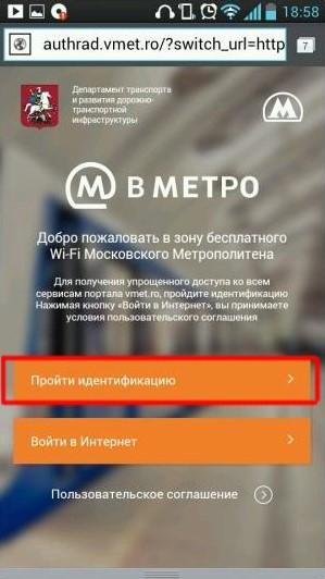 Рис. 3. Кнопка «Пройти идентификацию» на сайте Vmet.Ro