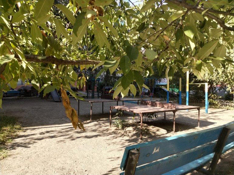 Рис.18 Пример фото в солнечный день