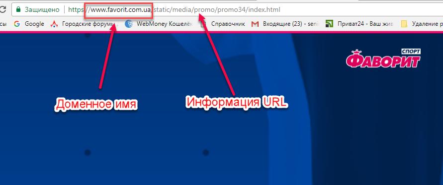 Рис.3 Пример отображения доменного имени и URL запрашиваемого сайта.