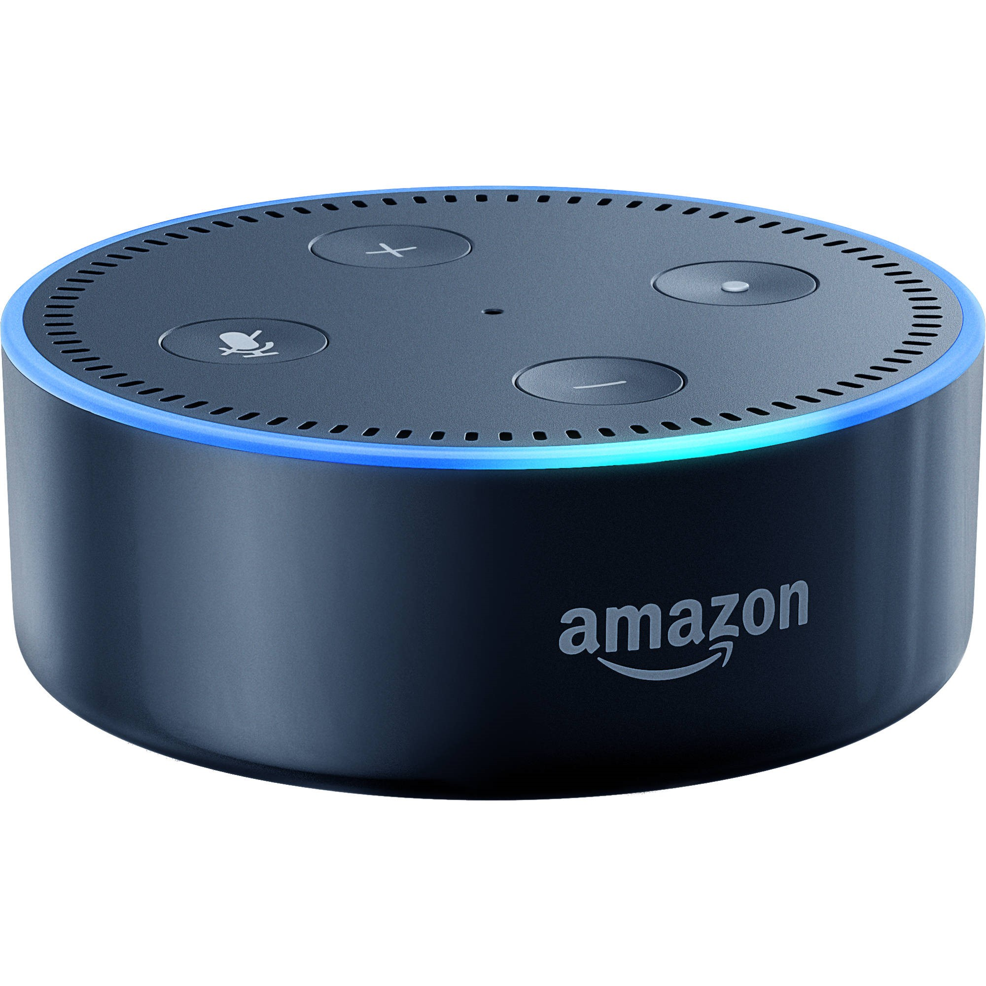 Рис.4. Amazon Echo Dot