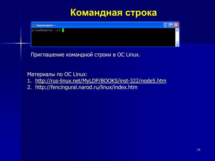 <Рис. 8 Командная строка Линукс>