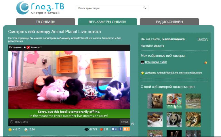Видео онлайн трансляции с вебкамер