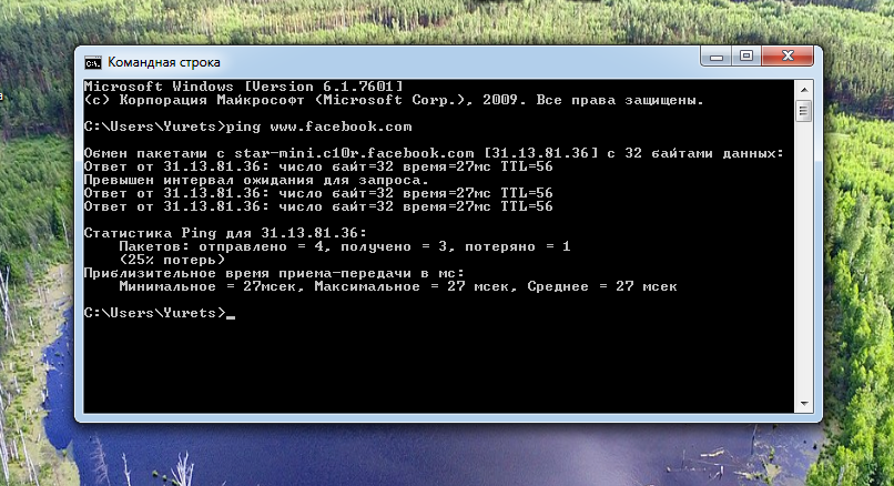Рис. 4. Поиск IP-адреса блокируемого сайта.