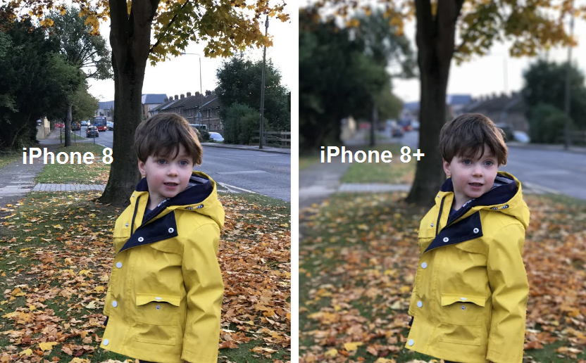Рис. 5. Фото с iPhone 8 и iPhone 8+ (с размытием фона).